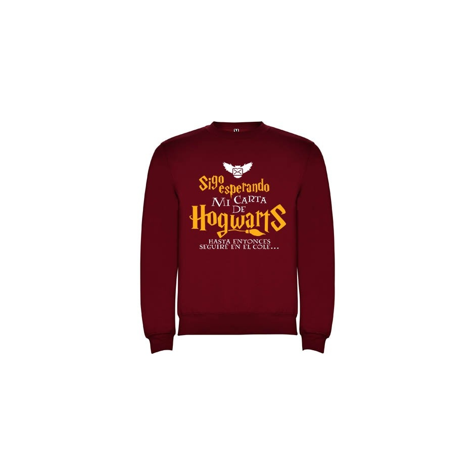 "Sudadera Harry Potter ""Carta"""