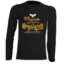 "Camiseta manga larga Harry Potter ""Carta"""