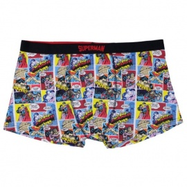 Boxer adulto Superman