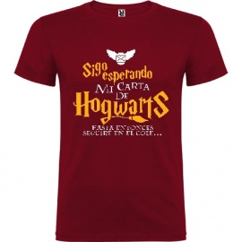 "Camiseta manga corta Harry Potter ""Carta"""