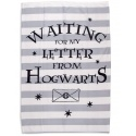 Manta polar Harry Potter Carta Hogwarts