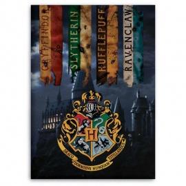 Manta polar Hogwarts Harry Potter